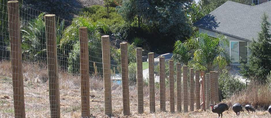 Field Fence Electric Fence Bay Area Salinas Jr Fencing